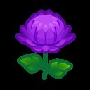 Image of Purple mums